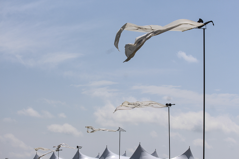 Flags are waving fiercely in the almost 40 mph winds during the 2014 Symphony in the Flint Hills. Many different music instrustments sat atop each flag. (Photo by Lisa-Marie Armitage)
